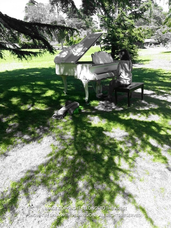 PittPa_PianoinGoldenGatePark_Photo_20x16