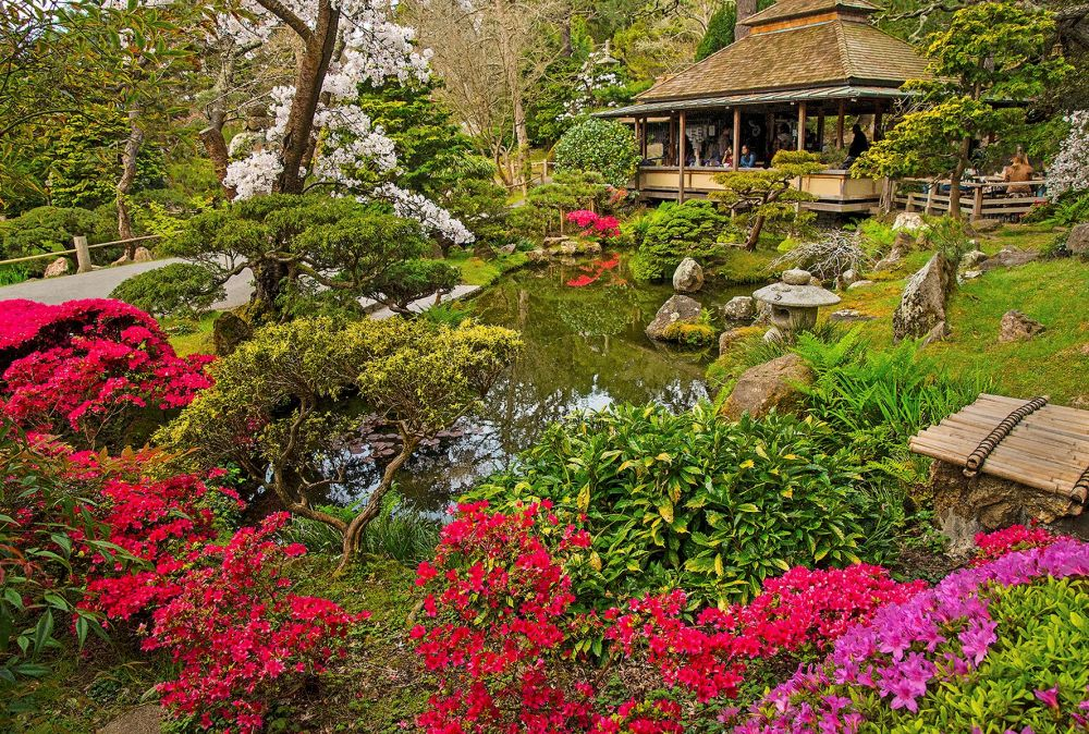 McGarrahDan-JAPANESETEAGARDEN_Photo_24x36