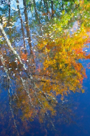 KayCh-Fall-Reflections_PhotoArt_20x16