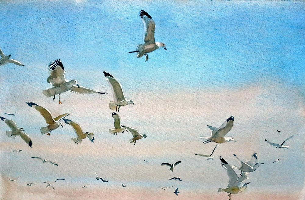 SklarRi-Gulls-in-Flight_WC24x30