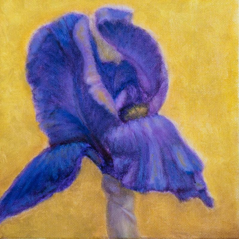 Paris-SeubertMi-Purple-Iris_Oil_9.25x9.25
