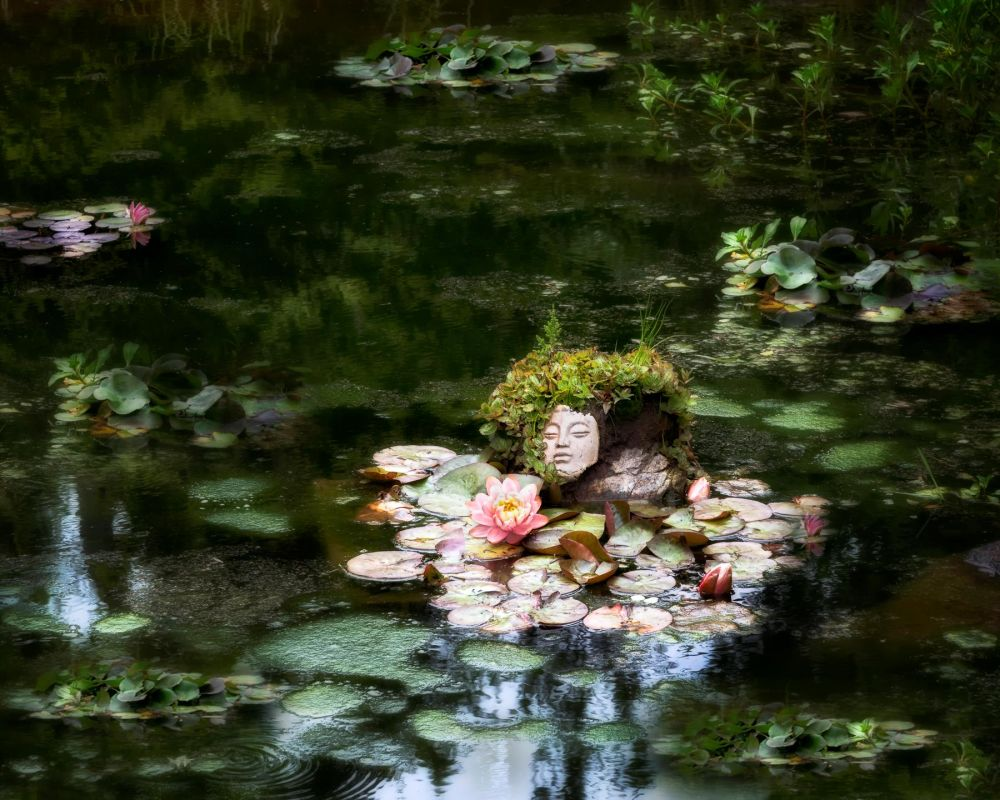 BorrelliPa-Botanical-garden-Pond_Photo_18x24