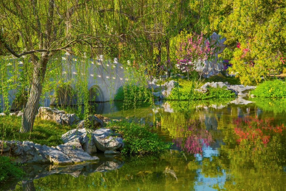 McGarrahDa-BRIDGE-AT-HUNTINGTON-GARDENS_PhotoArt_12x15