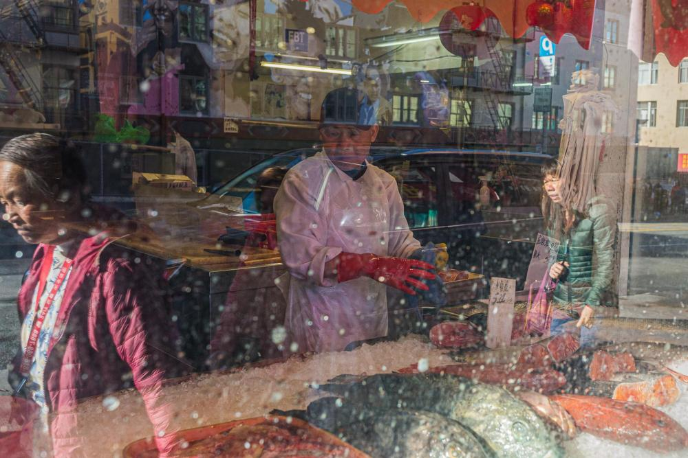 JacobusCa-Rumination-Chinatown-Fish-Market_Photo_18x24