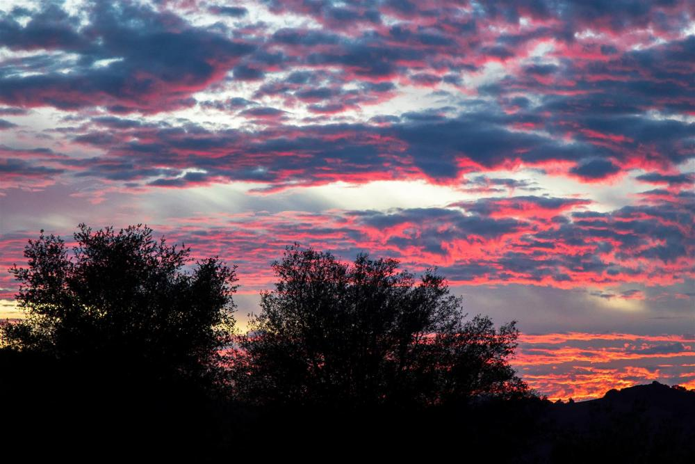 LocherDo-California-Sunset_Photo_13x20