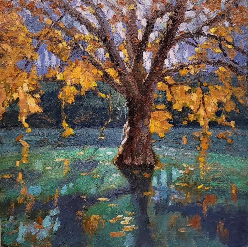 LoSa-Golden-Leaves-in-Golden-Gate-Park_Oil_12x12