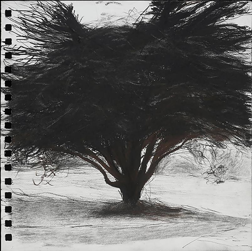 ErvilleDa-Tree-As-SelfPortrait-Wild-and-FreeWilled_1