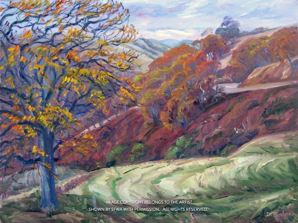 SabreIr_LateFall,Mt.Diablo_Oil_30.5x24.5